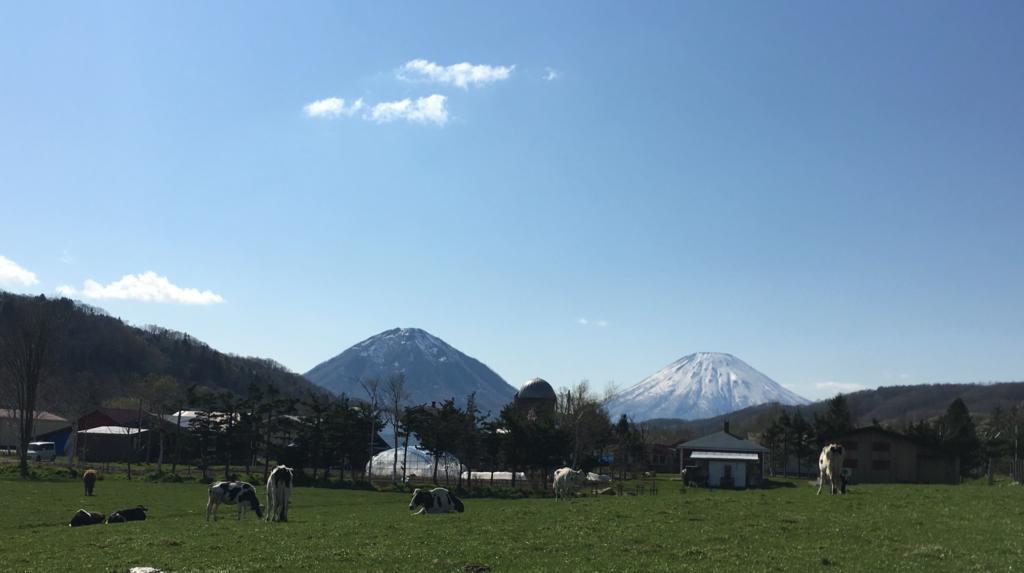 """tigris """"羊蹄山""""、""""尻別岳"""""""